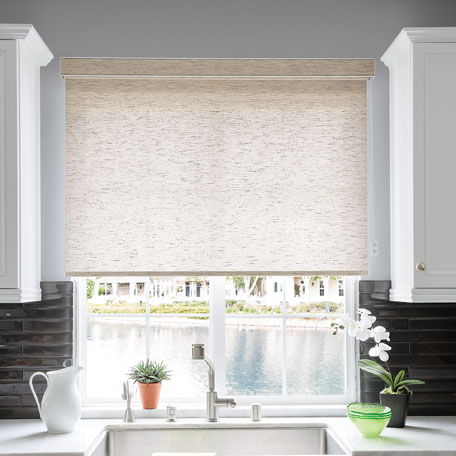 Classic Motorized Roller Shade