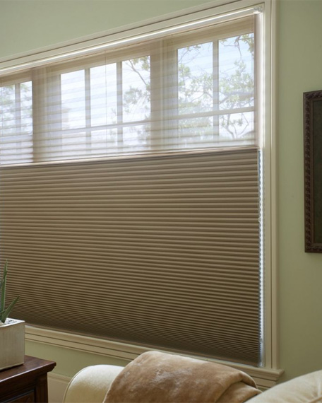 Classic Grand Cell Blackout Dualview Honeycomb Shade